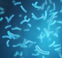 bacteria-water